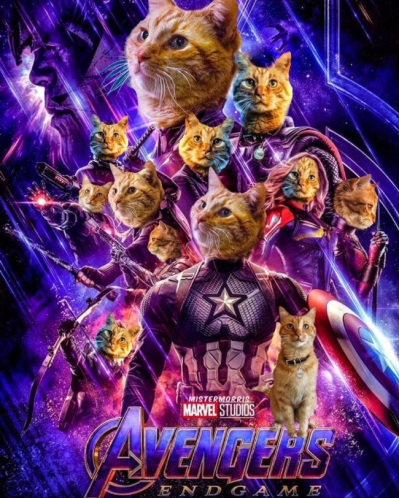 avengers-endgame-cat-all-goose-poster_marvel-twitter